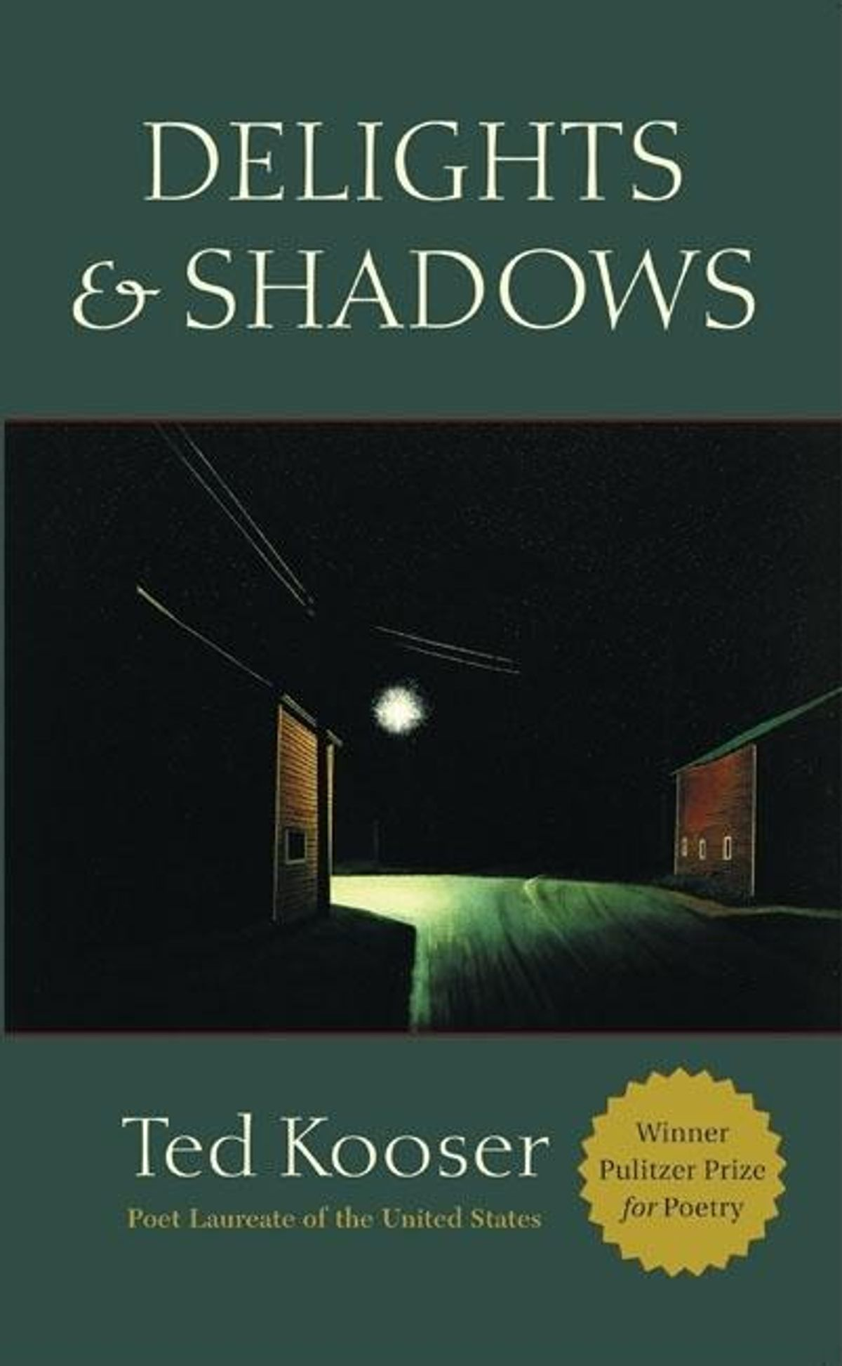 """13) Delights & Shadows - Every collection by Ted Kooser is amazing, but Delights & Shadows is probably the best example of his work. The United States Poet Laureate from 2004 to 2006, Kooser is a remarkable writer because he is able to distill so much grace from everyday life. Often described as conversational and approachable, Kooser's poetry is magnificent because it gently teaches us how to see the ordinary as beautiful. Check out the poem below, titled """"Pegboard,"""" where he artfully pulls cosmic awe from such a commonplace item.""""It has been carefully paintedwith the outlines of toolsto show us which belongs where,auger and drawknife,claw hammer and crosscut saw,like the outlines of hands on the wallsof ancient caves in France,painted with soot mixed with spitten thousand years agoin the faltering firelight of time,hands borrowed to work on the worldand never returned."""""""