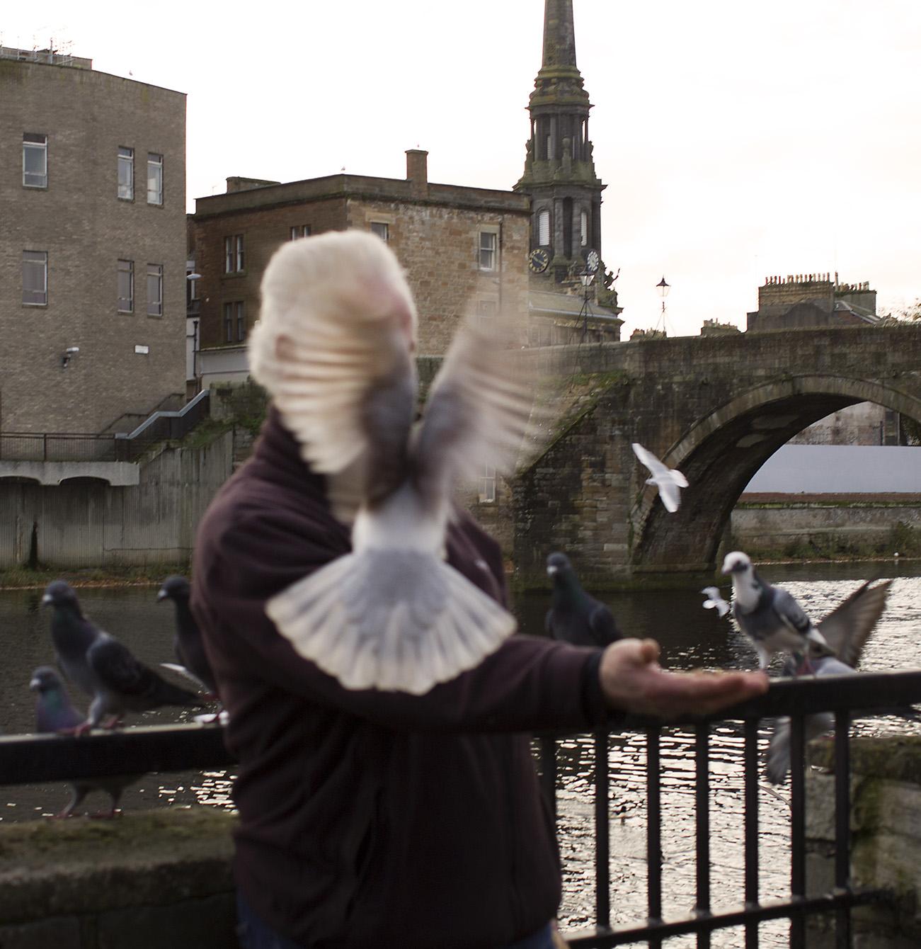 birdman ayr INSTA.jpg