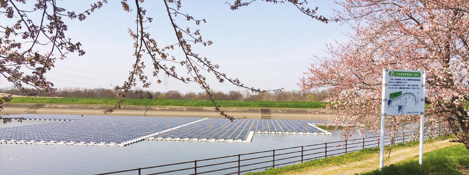 梅ノ木古凍貯水池(埼玉) - 画像はシエルテール社より提供
