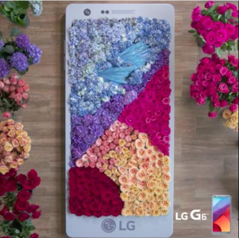 LG FLOWER PHONE.png