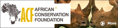 The African Wildlife Conservation Fund is a registered trust in Zimbabwe (Registered Trust Number 0000476/2012). The work is done with the support of the Zimbabwe Parks and Wildlife Management Authority and the Research Council of Zimbabwe.