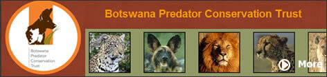 Botswana Predator Conservation Trust For over two decades, the Botswana Predator Conservation Trust has been working to study and preserve wildlife in Africa.