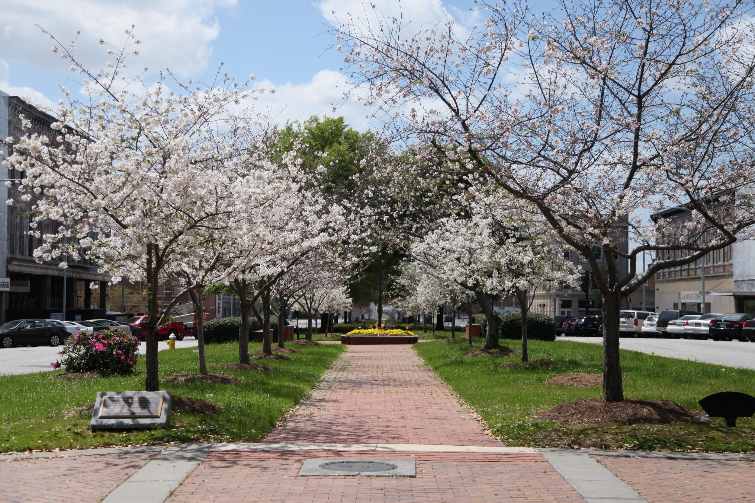 Third Street Park. Macon, Georgia