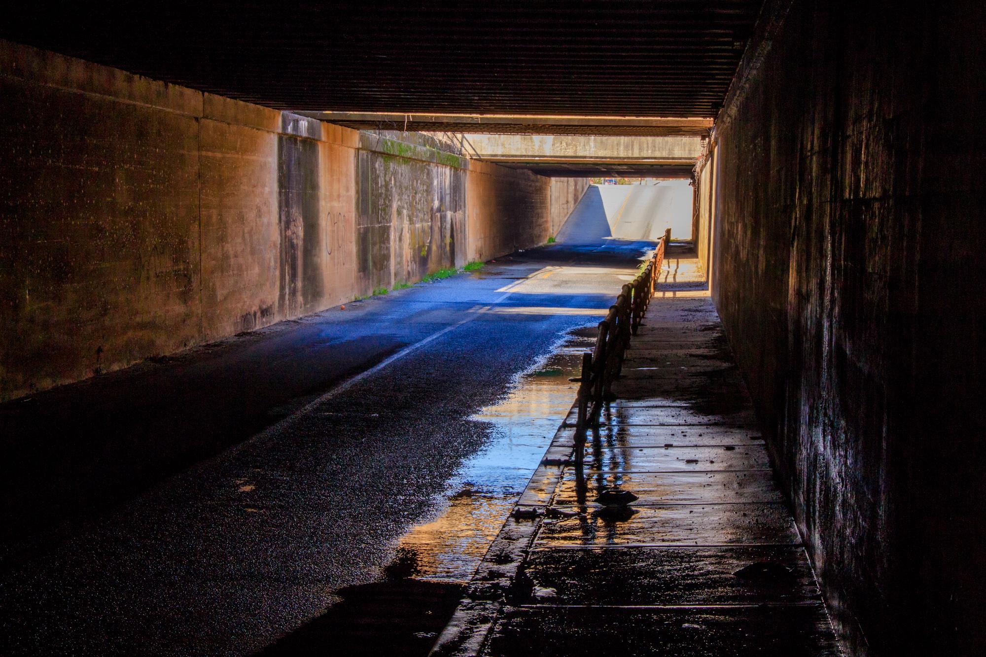 tunnel_2.IMG_7554-66.jpg