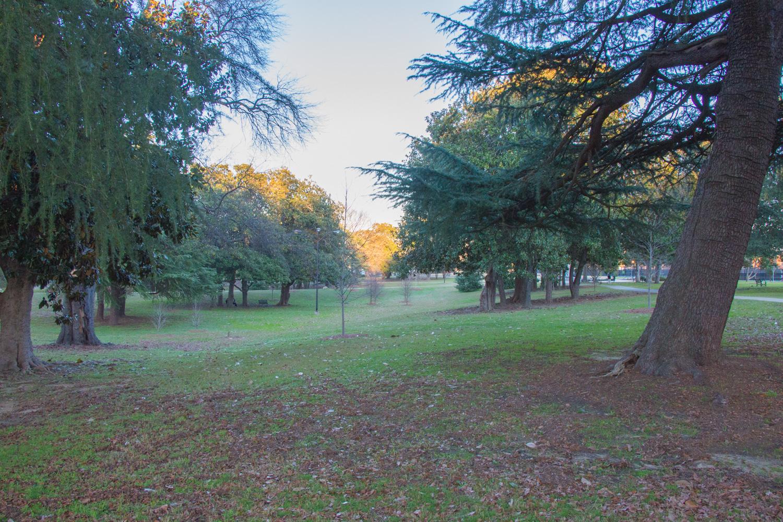 Tattnall Park. Macon, Georgia