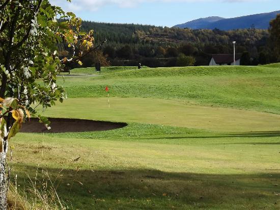 macdonald-dalfaber-golf.jpg