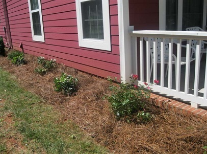 "One of our goals at ATCEDC is to develop our affordable rental product in such a way that no casual bystander would immediately identify our houses as ""rental property."" Quality landscaping helps us accomplish this goal!"