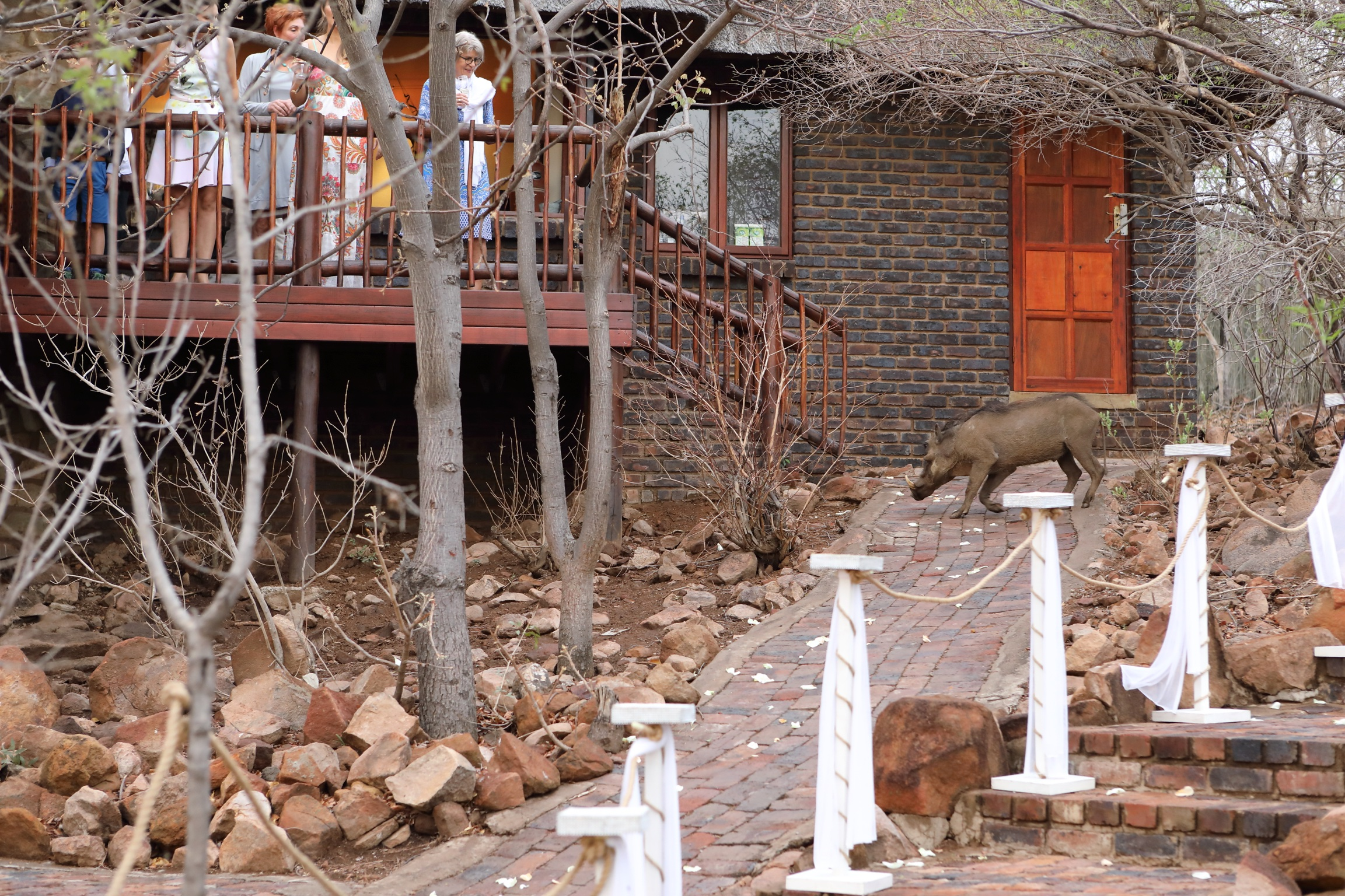 Even the Warthogs were part of the Proceedings.