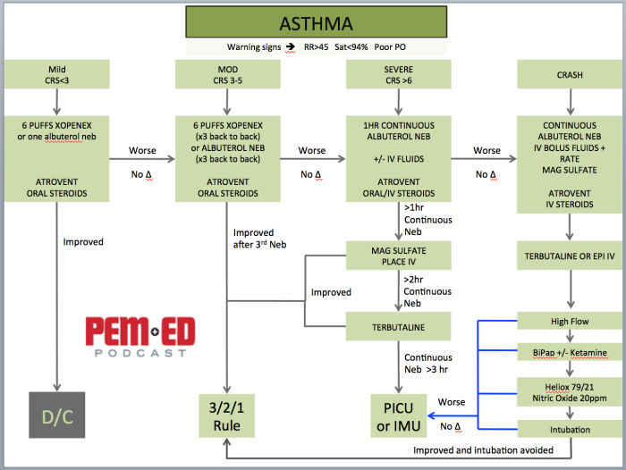 Asthma Pic.png