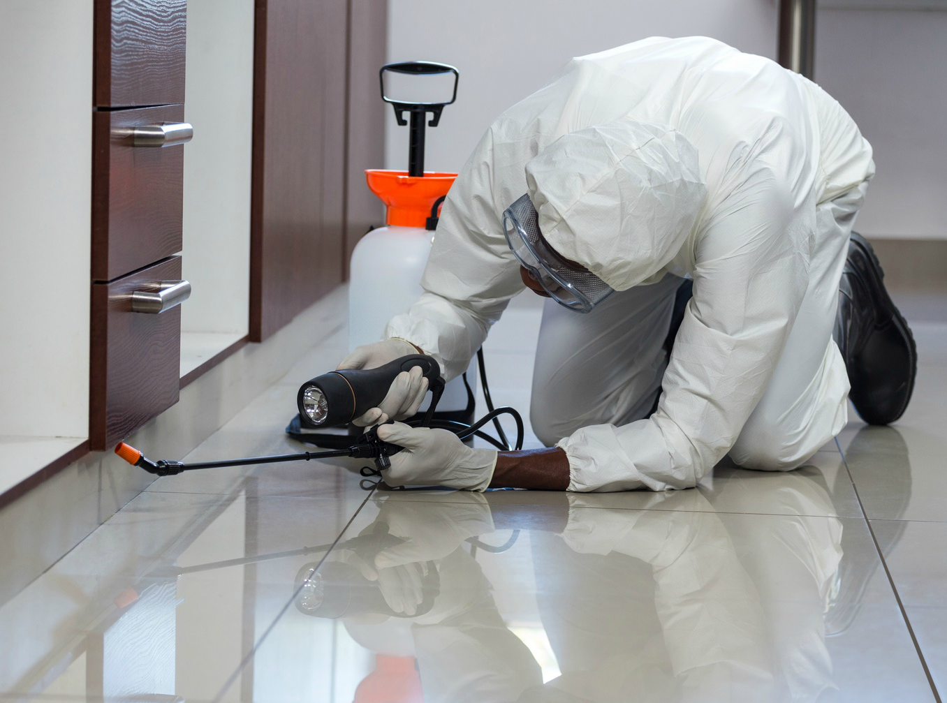 pest control worker spraying for bugs