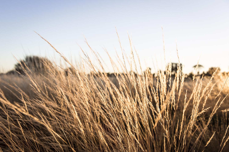 Lean Timms Uluru  (27 of 57).jpg
