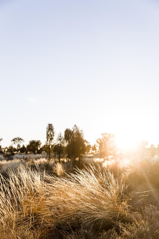Lean Timms Uluru  (28 of 57).jpg