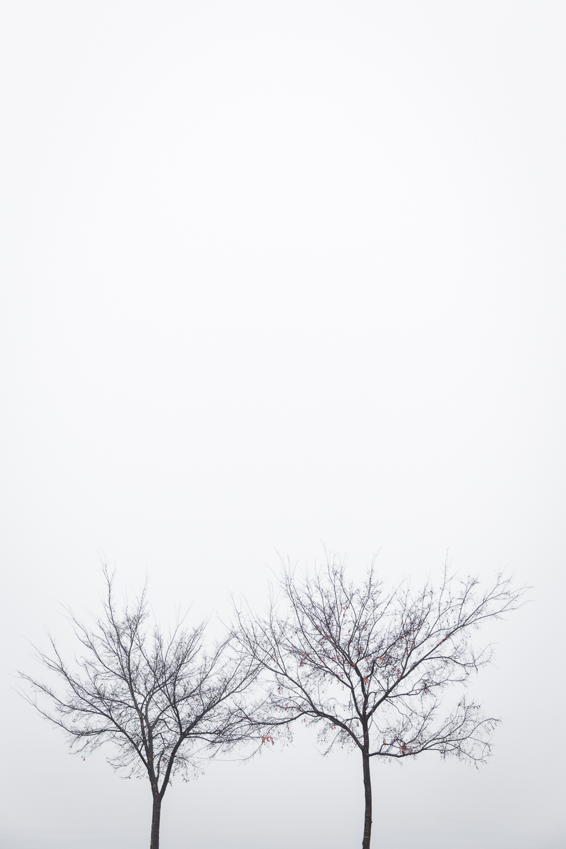 Lean Timms Canberra Fog (10 of 21).jpg