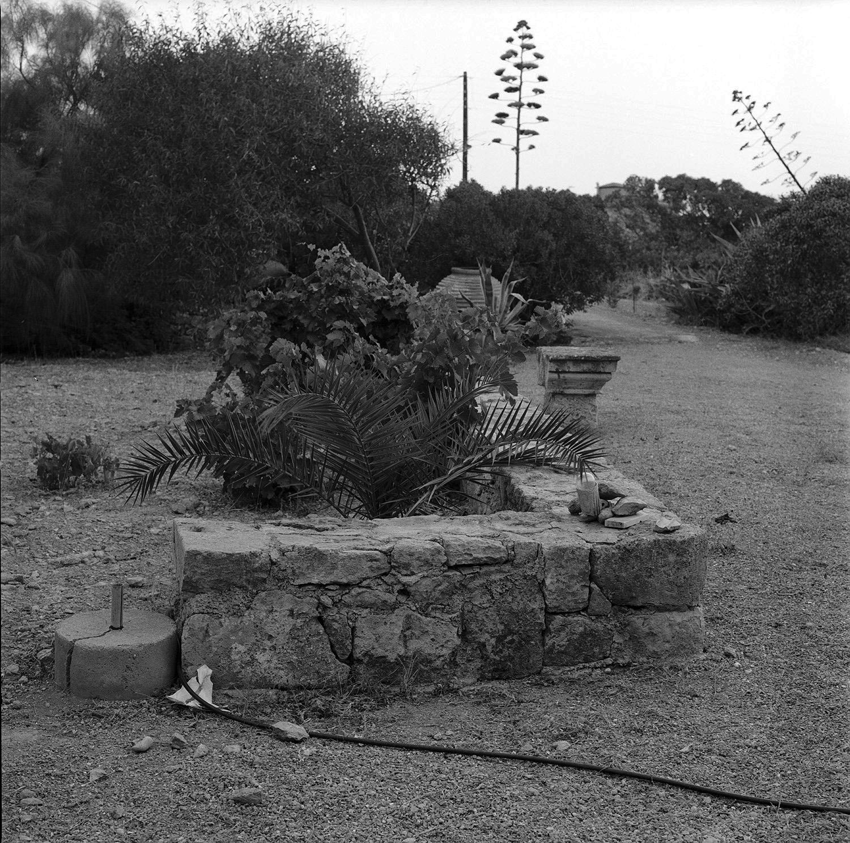 0003_my father's lands aegina .jpg