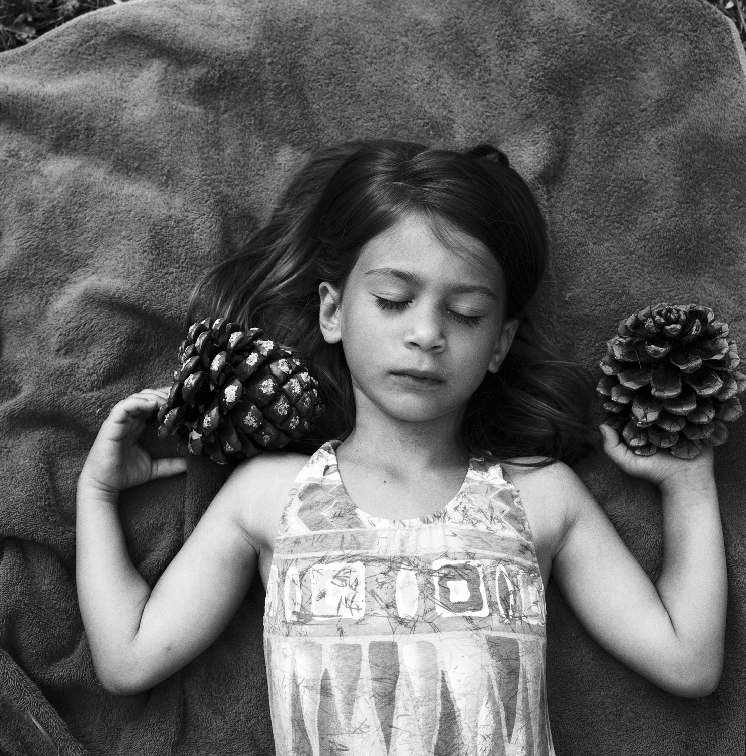 0004_italian series_composition with pine cones.jpg