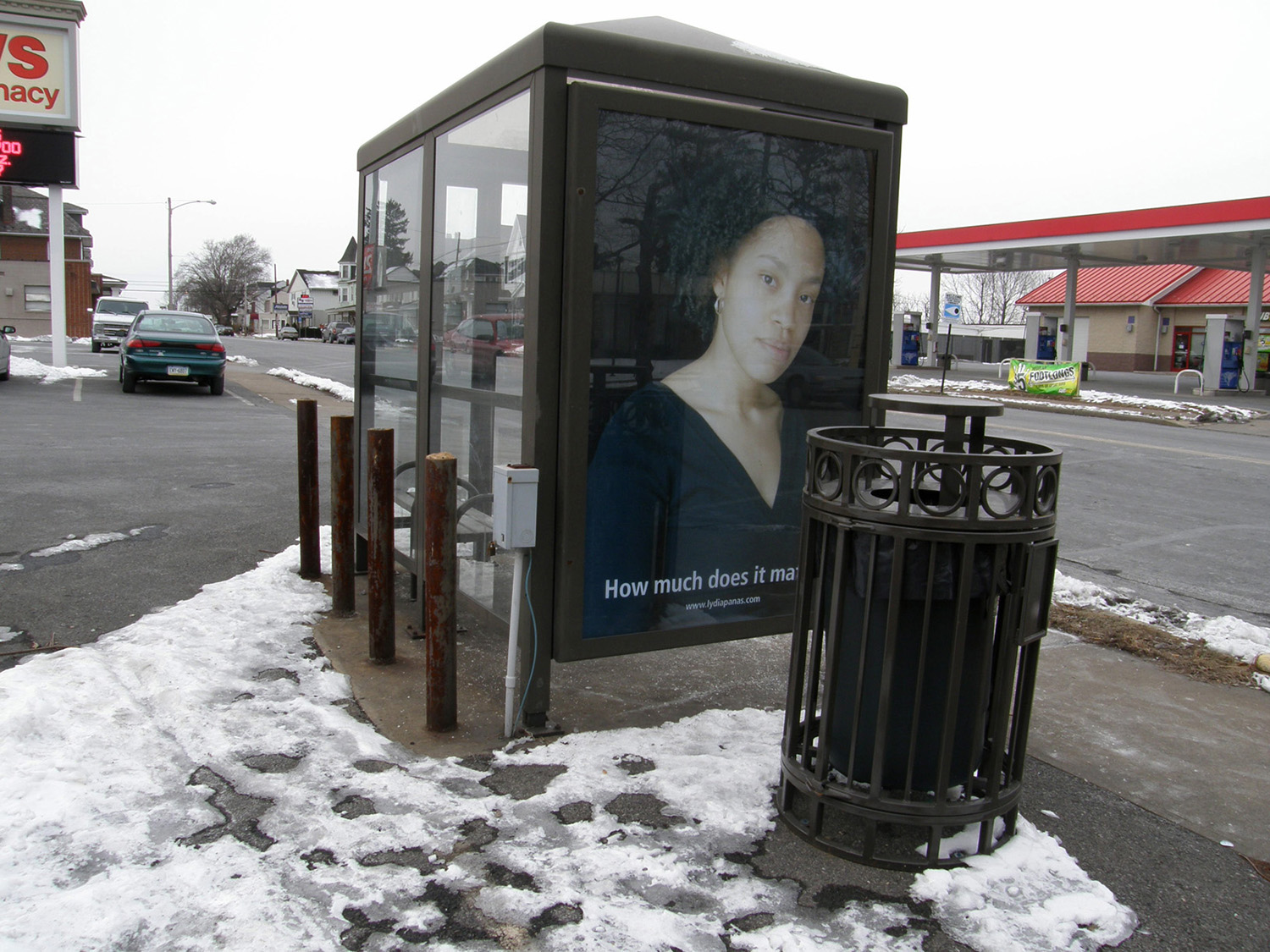 Mona Lisa Smiles, 1/11 Bus Shelters, Lehigh Valley, PA   2009