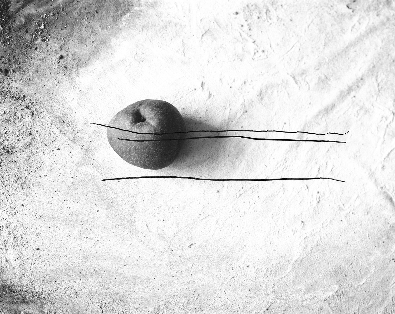 lines in the sand pear 1 copy.jpg