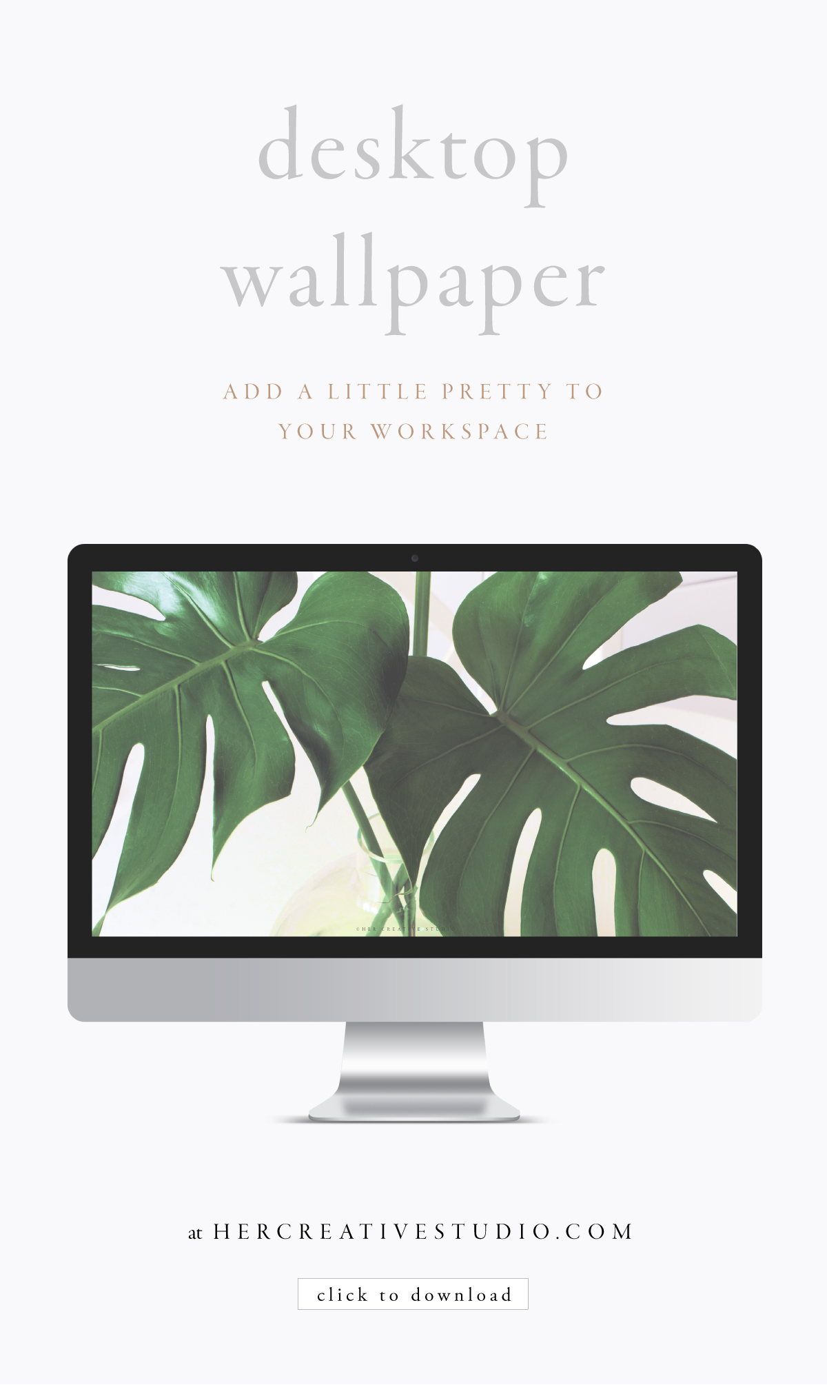 August-WALLPAPER.jpg
