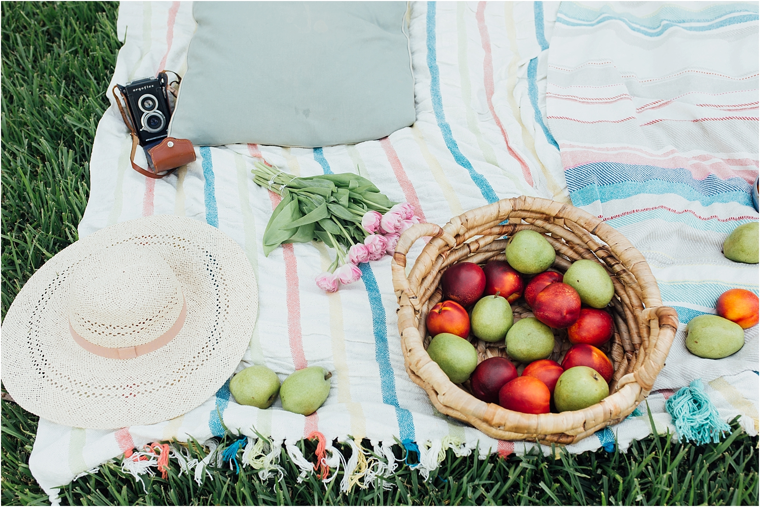 Taylor Gonsoulin Photography lifestyle picnic