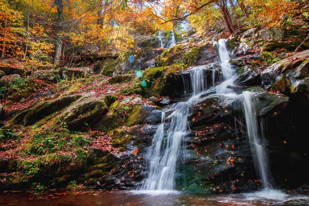 Dark Hollow Falls, Fall 2014