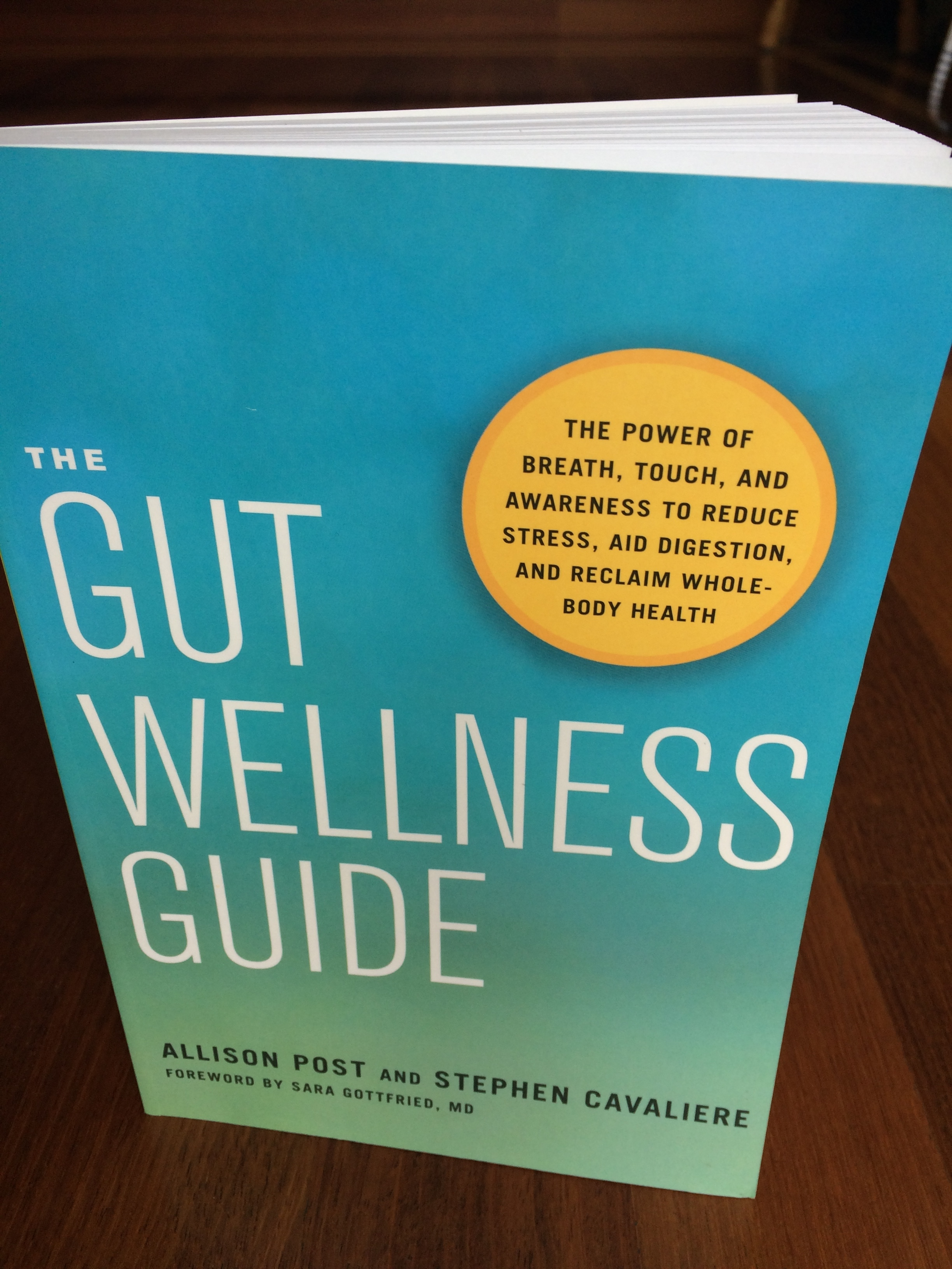 gut wellness guide.JPG