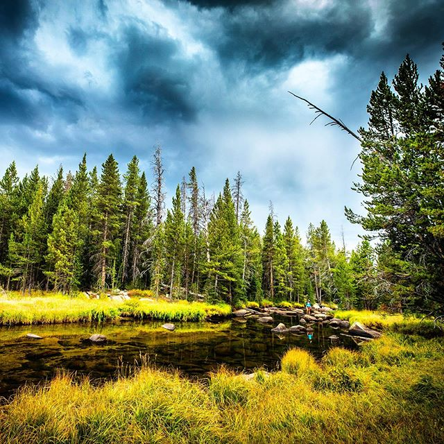 Reflections of summer bending toward fall.