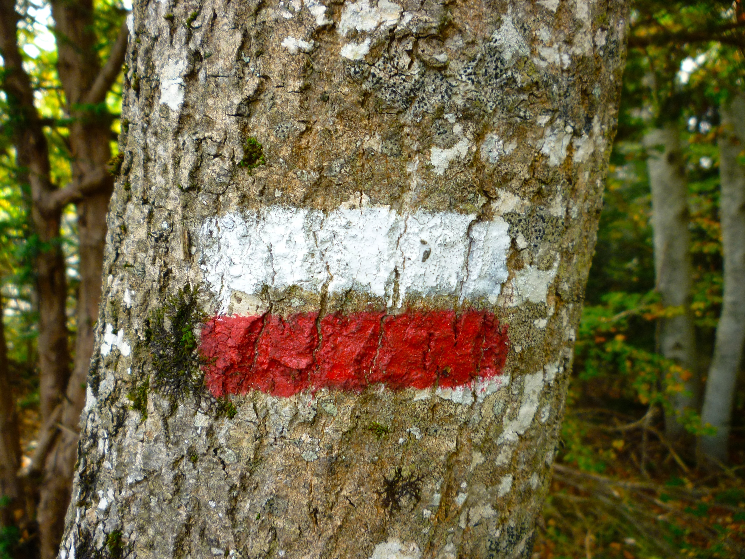 The GR trail marker