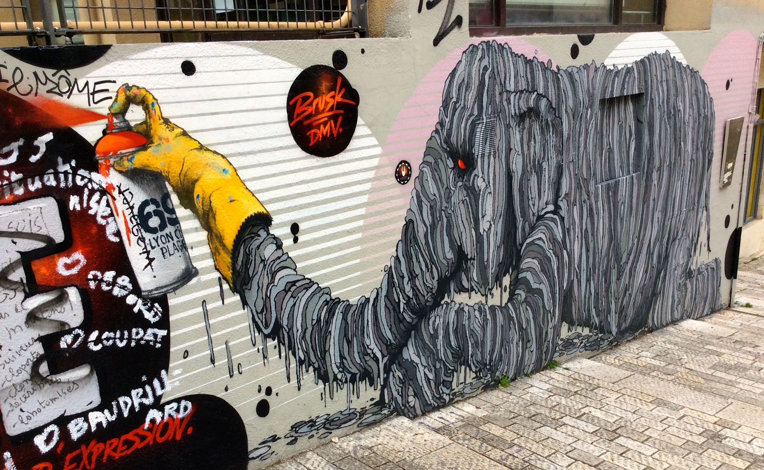 Graffiti in La Croix-Rousse
