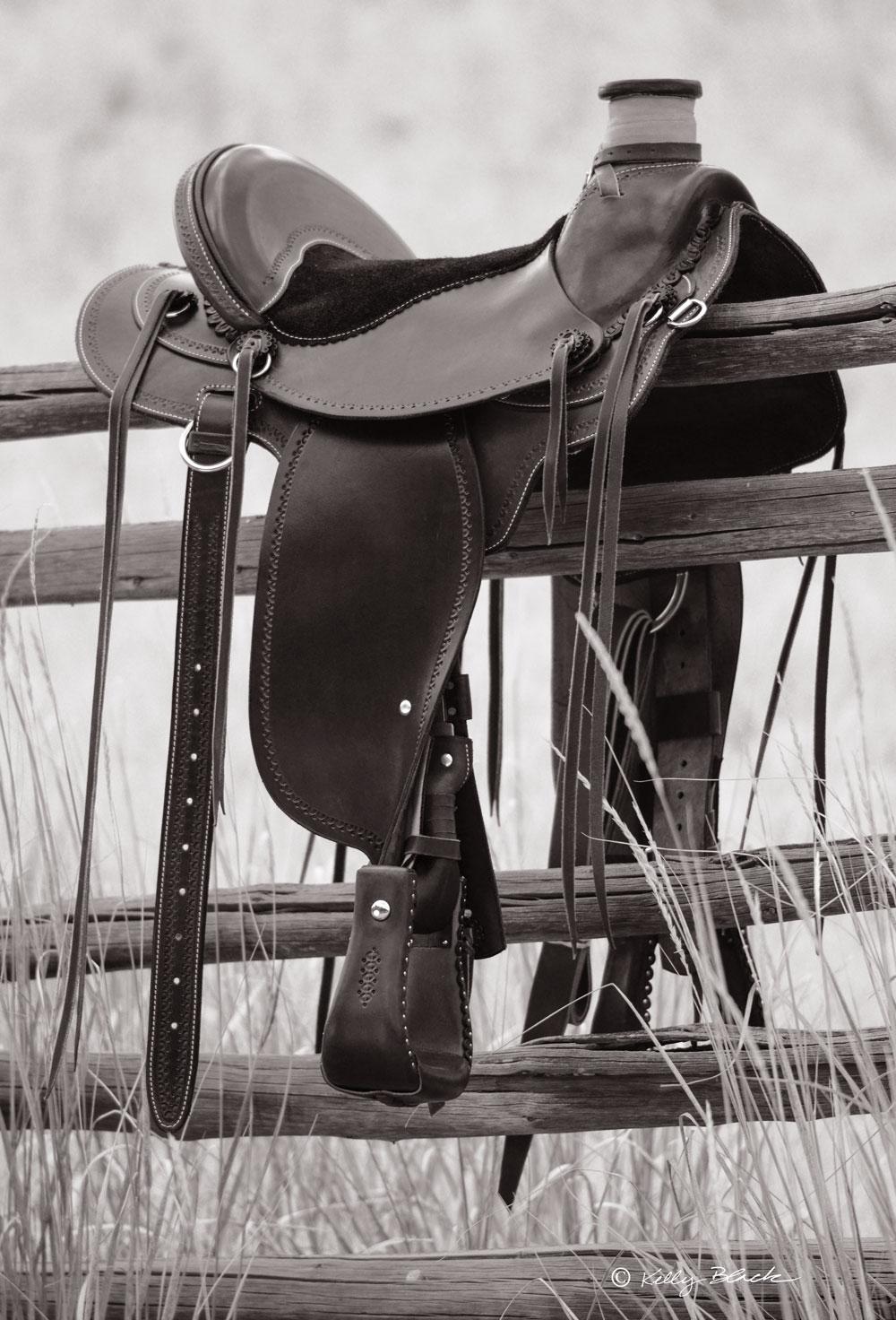 Soft Saddle Horse Bill Huston