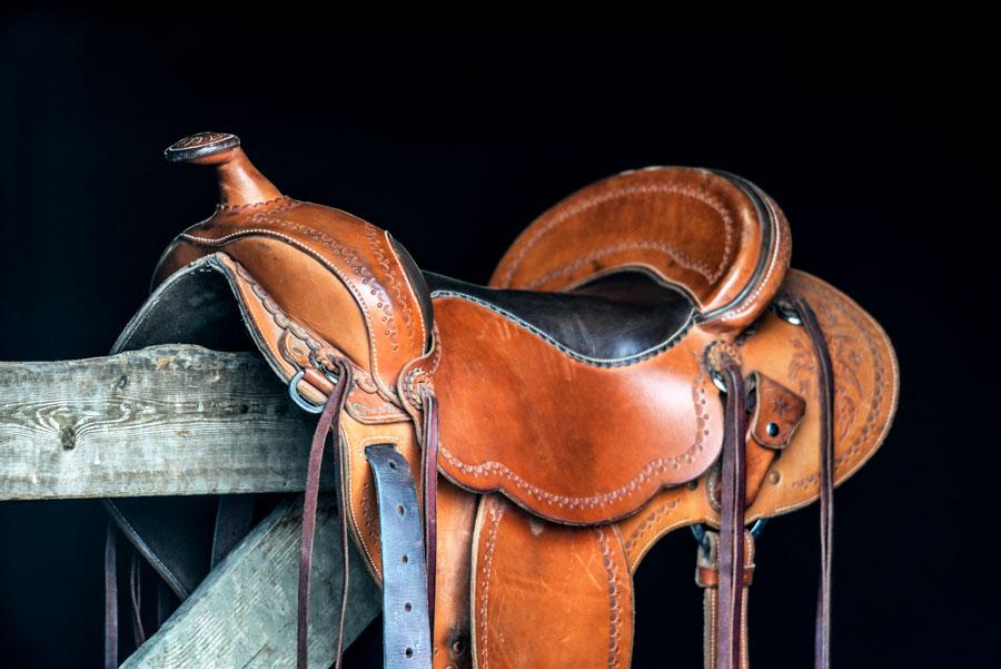 one of Emily Sharratt's hardworking soft saddles