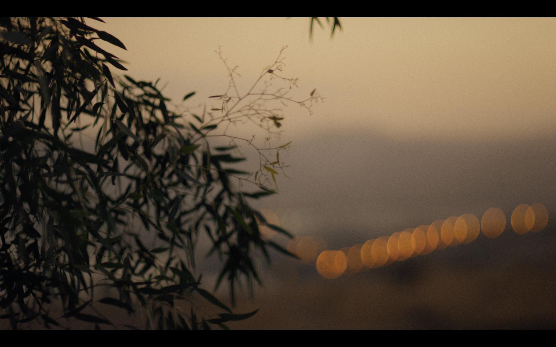 Screen Shot 2019-10-04 at 2.53.34 PM.png