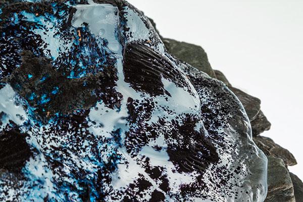 Rock-Pool-ShellWeb.jpg