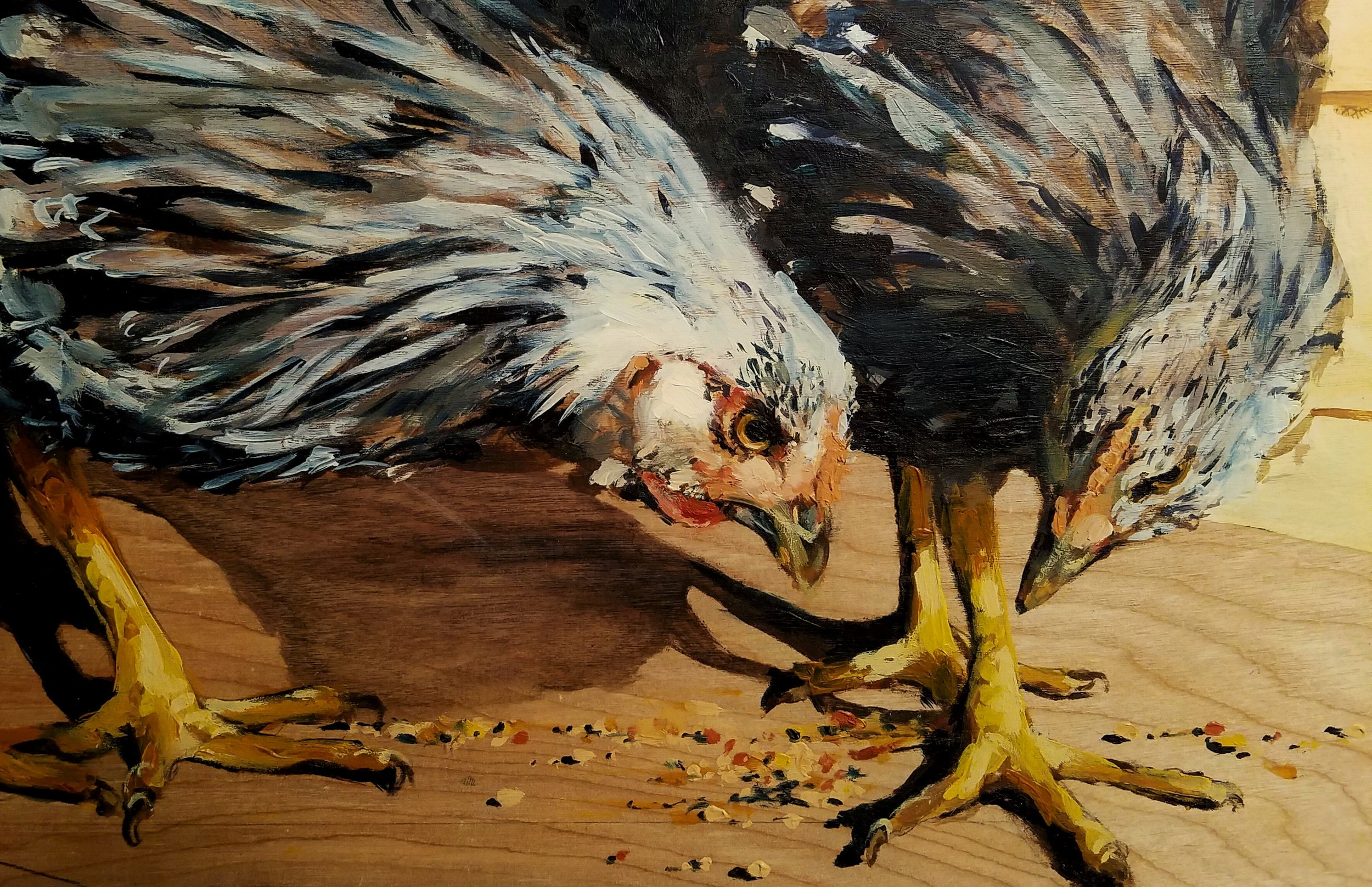 """""""Pullets"""", oil on wood, 16""""x 16"""", $500"""