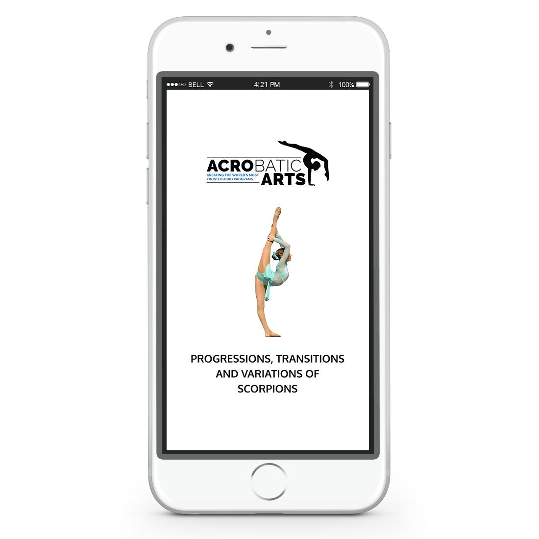 Acrobatic Arts - Website Promo.png