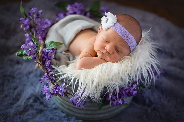 Sweet Brooklyn. #kimrobbinsphotographer #newbornphotography