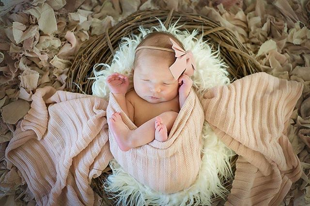 I'm loving all these baby sessions I've been doing! Meet Finley!! 💕 #newbornphotography #kimrobbinsphotographer