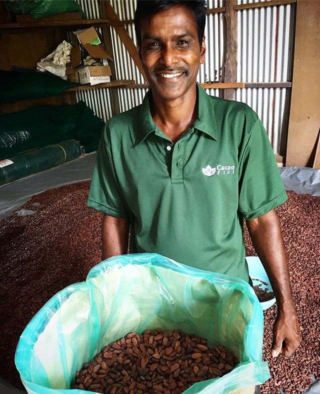 The folks at @cacaofiji support cocoa farmers throughout the Fiji islands. A small lot of their Matasawalevu beans has just made it to Oakland! Our tasting notes: cashew, vanilla, and fudge #bula #newbeans #fiji #vanualevu #cacao #craftchocolate #beantobar