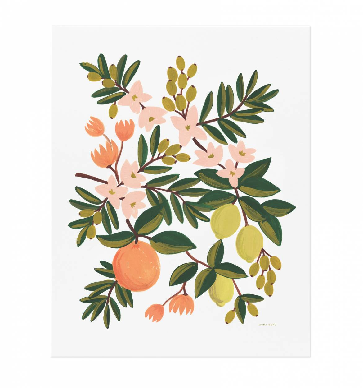 Citrus Floral Art Print from Rifle Paper Co.