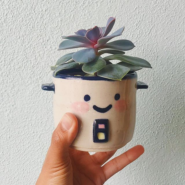 My first rice cooker pot. And the succulent from @fractalflora is growing!! Yay! I didn't kill it 🤣. This bb is all mine but I hope to make more to sell online for the holidays.