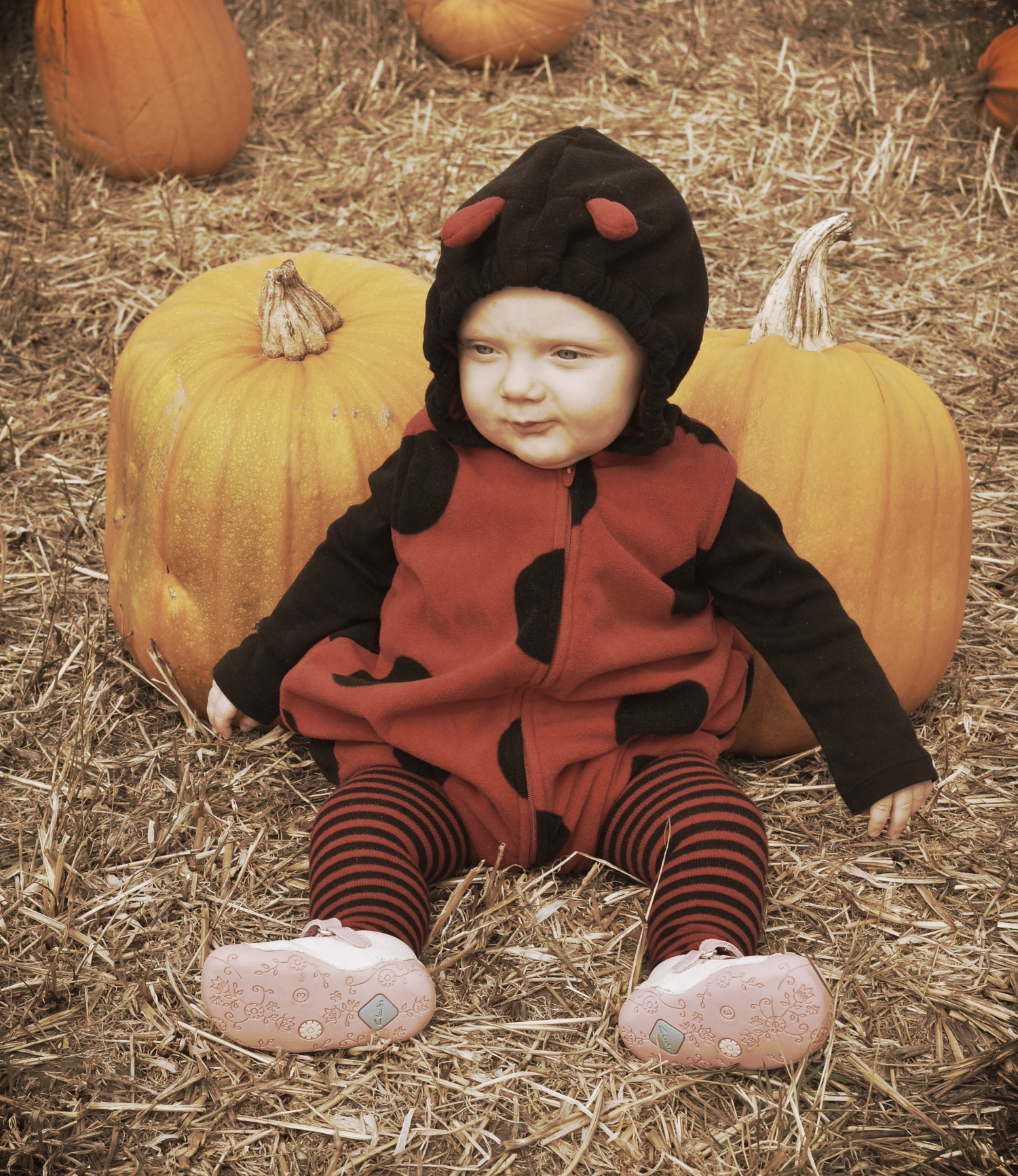 Toddler G's first Halloween at a pumpkin patch in Half Moon Bay.