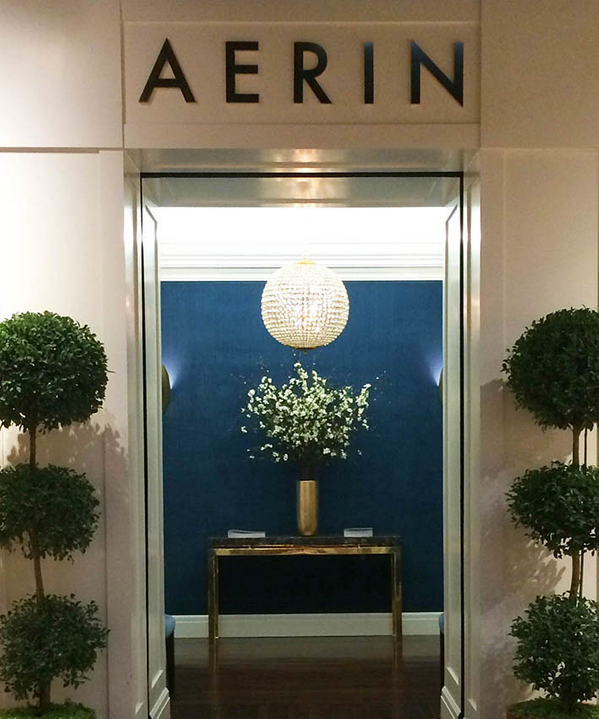 Amazing wall color and lighting fixture in the  Aerin entrance