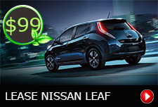 Nissian-Button-Leaf3.jpg