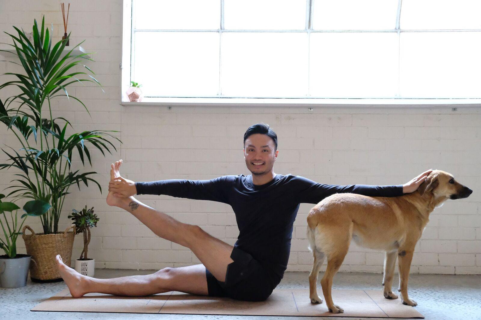 I am that yoga dog.jpeg