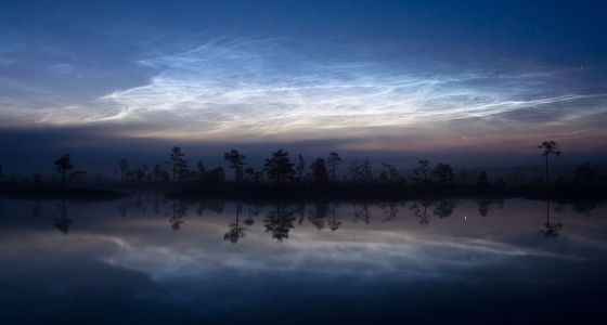 560px-Noctilucent_clouds,_Martin_Koitmae_WIKI_restrictions.jpg