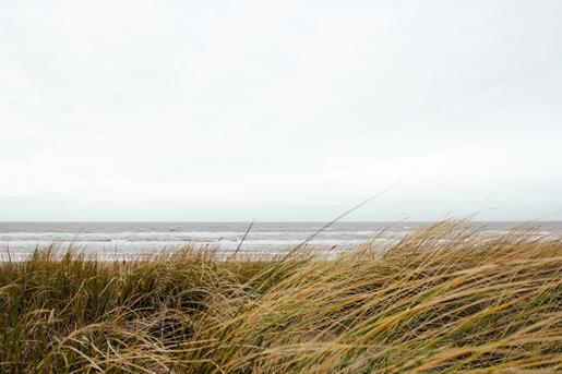 Beach, Alex Talmon, unsplash.com