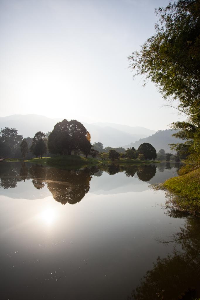 Tai Ping Lake Gardens