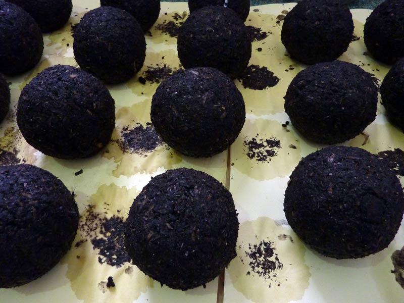 thomas-paine-soil-balls.jpg