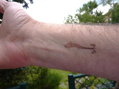 5-miracle-tattoo.jpg