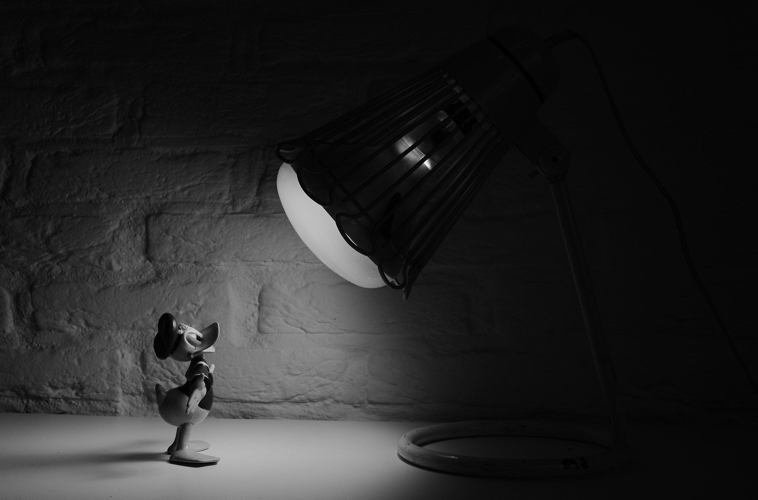 On the spot: Skitter photo https://www.pexels.com/photo/black-and-white-cartoon-donald-duck-spotlight-3706/