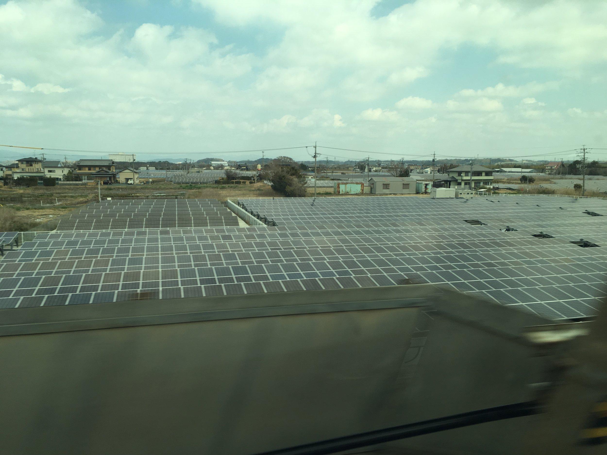 solar field.jpeg
